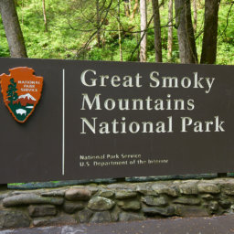 Photography Guide to Smoky Mountains National Park