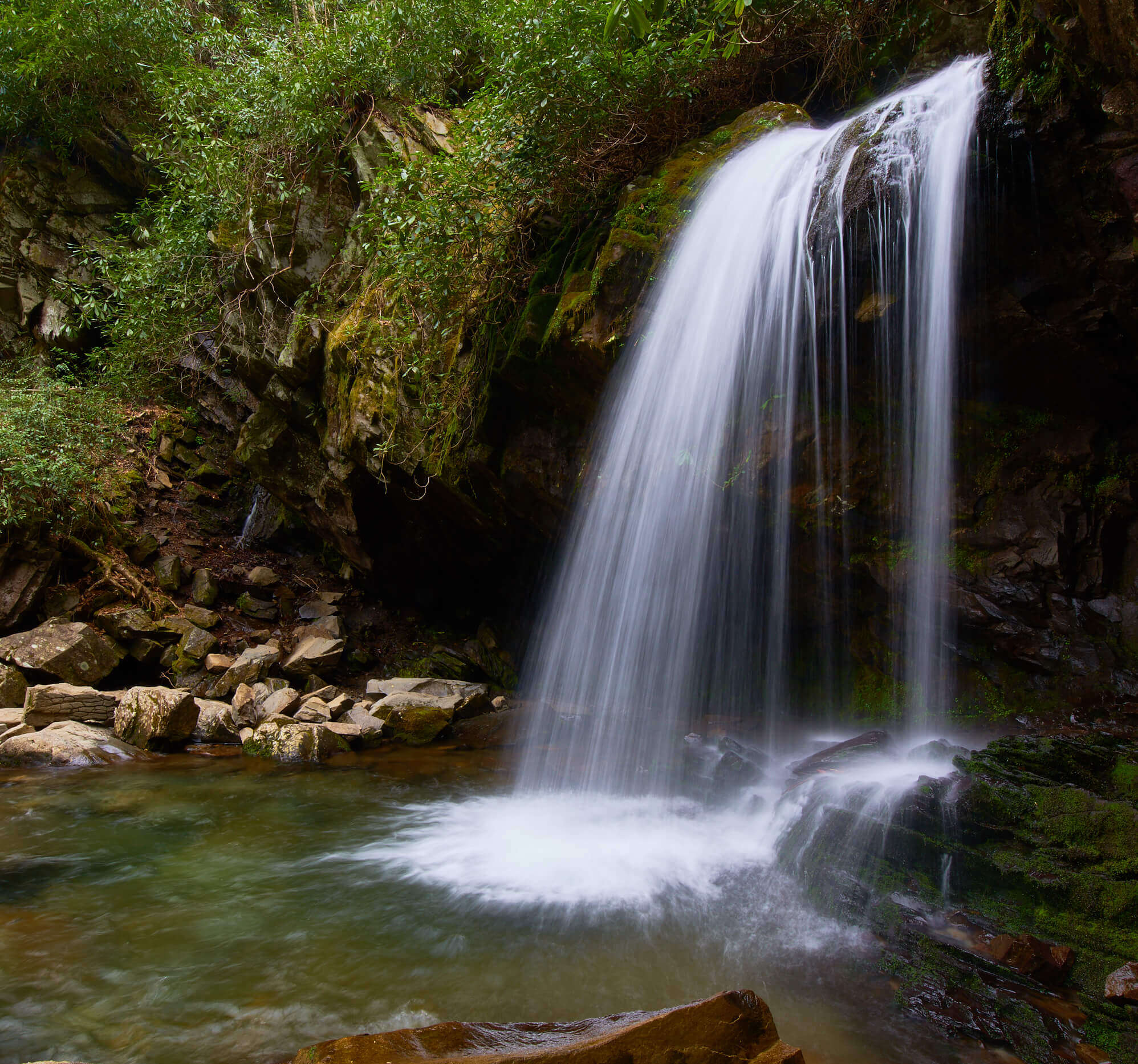 The Great Smoky Mountains Photography Guide