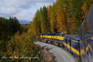 Alaska Rail Road Trip Itinerary