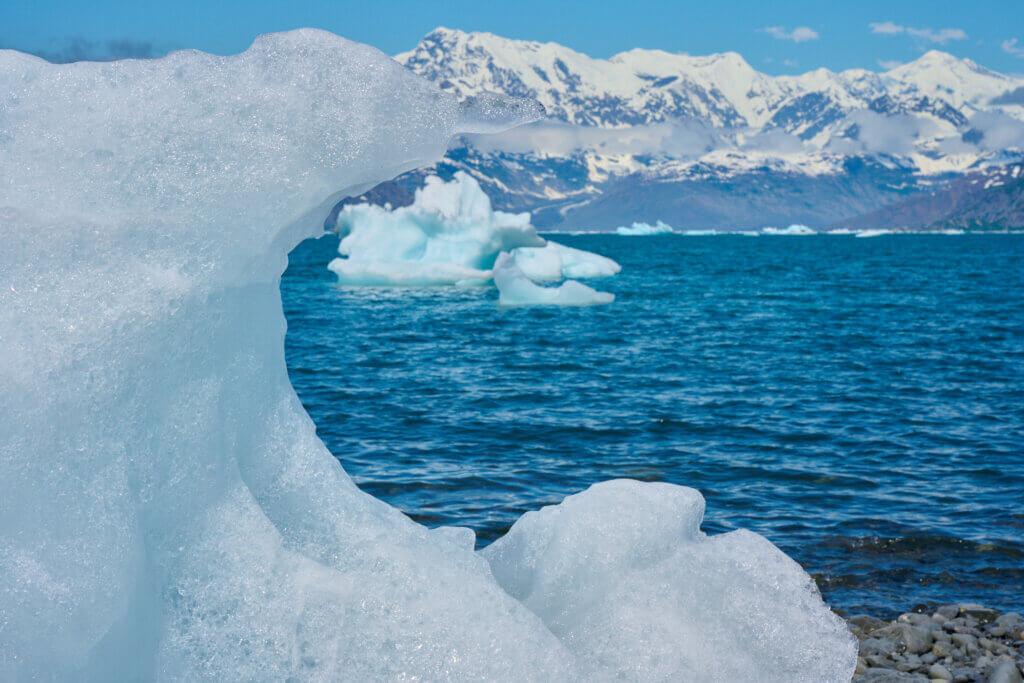 Heather Bay Looking Towards Columbia Glacier