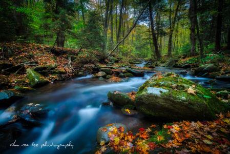 Fall in Catskills New York